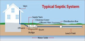 Diagram of typical septic system