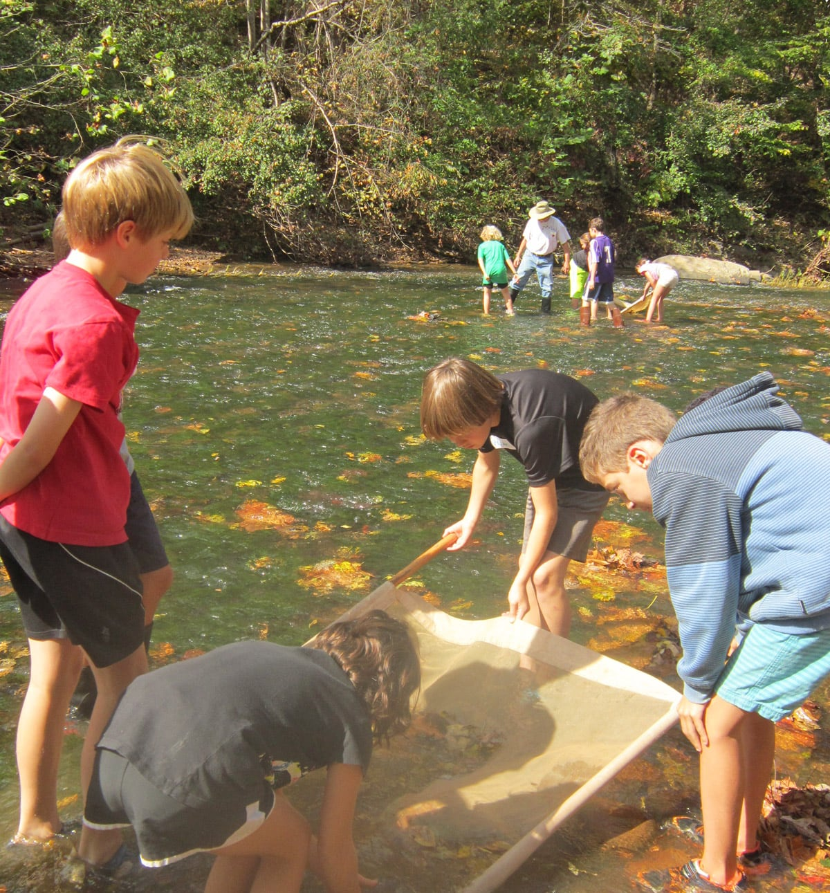 Students discover how insects are used to determine water quality