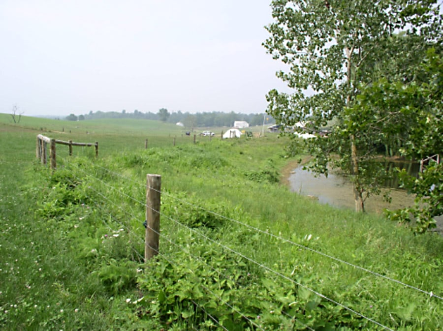 Fencing to exclude livestock protects stream quality