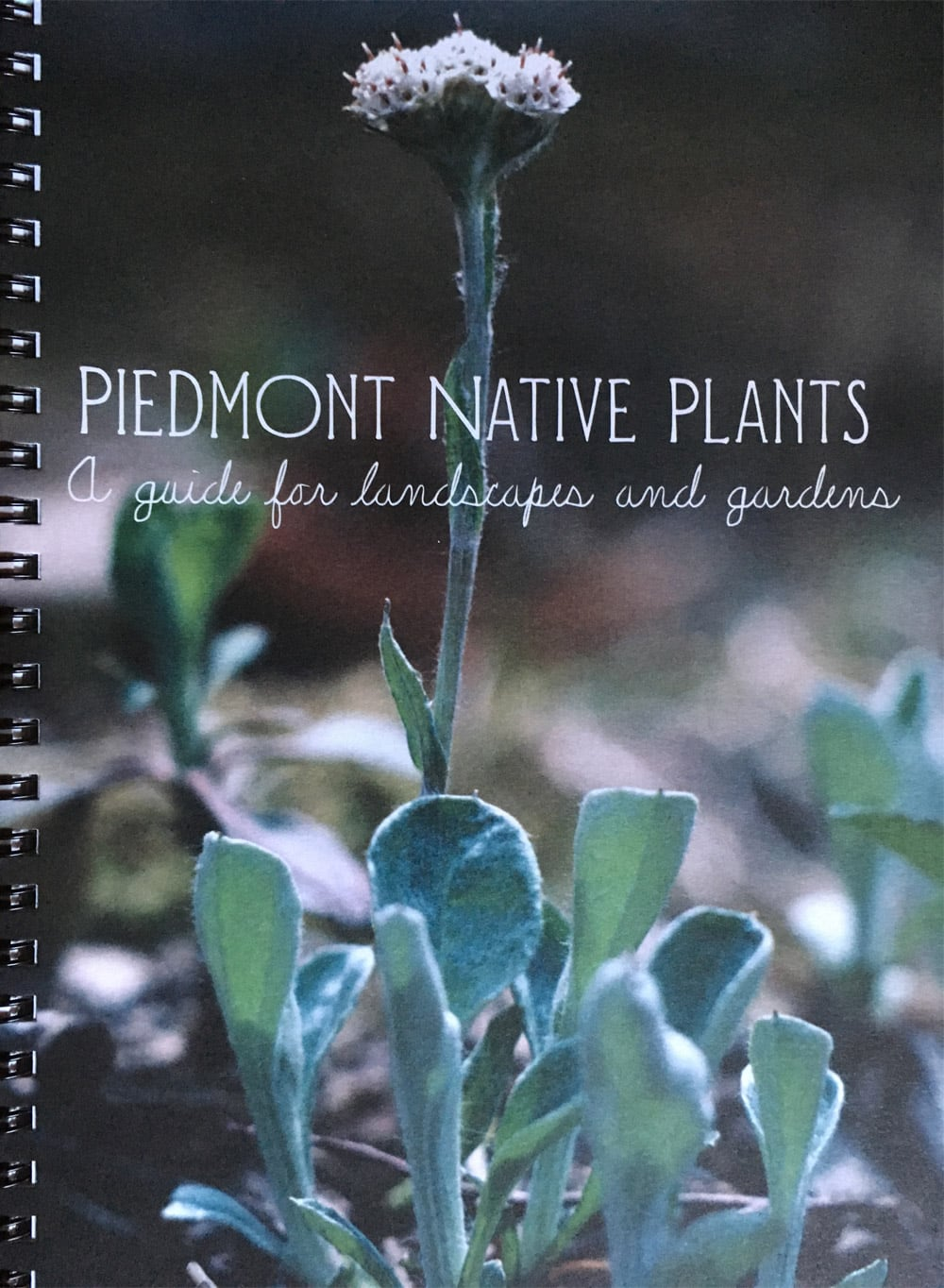 Native Plants Guidebook