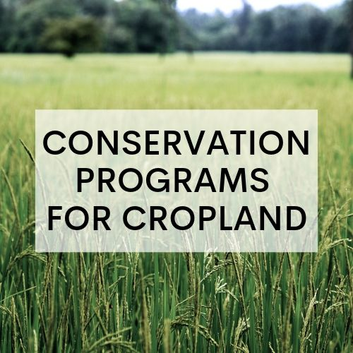 Agriculture Conservation Programs for Cropland