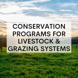 https://www.tjswcd.org/conservation-programs-for-livestock-and-grazing-systems/