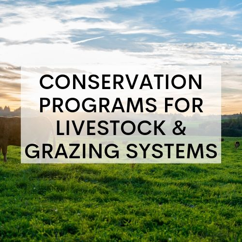 Agriculture Conservation Programs for Livestock & Grazing Systems