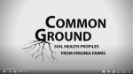 Video: Experiments with No-Till Cover Crops at Potomac Vegetable Farms