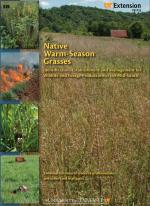 Native Warm-Season Grasses