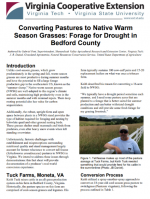 Converting Pastures to Native Warm Season Grasses: Forage for Drought in Bedford County