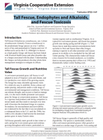 Tall Fescue, Endophytes and Alkaloids, and Fescue Toxicosis