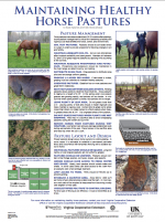 Maintaining Healthy Horse Pastures