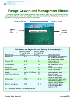 Forage Growth and Management Effects