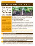 Ten Ways Cover Crops Enhance Soil Health