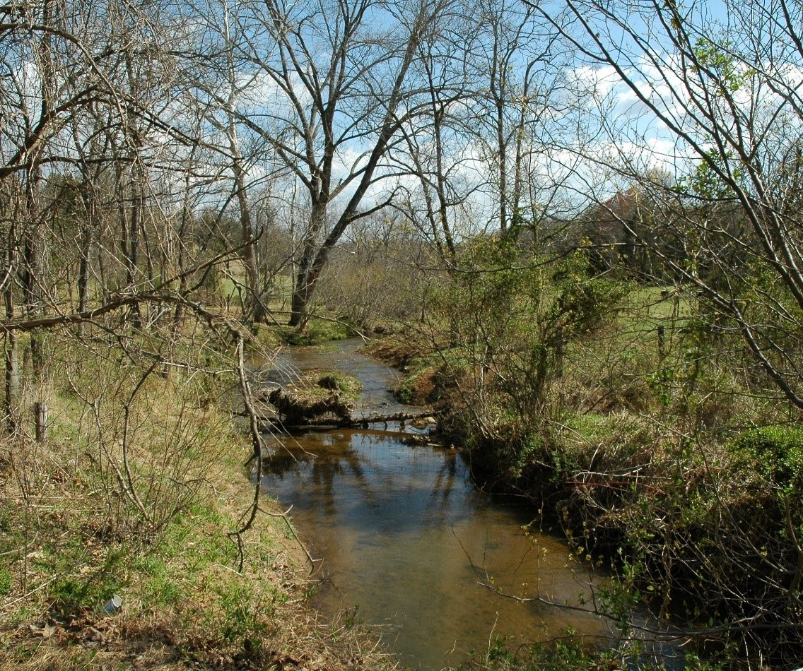 Perennial Stream - latest News