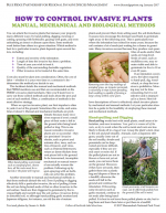 Controlling Invasive Plants Effectively & Safely with Herbicides