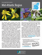 Pollinator Plants: Mid-Atlantic Region