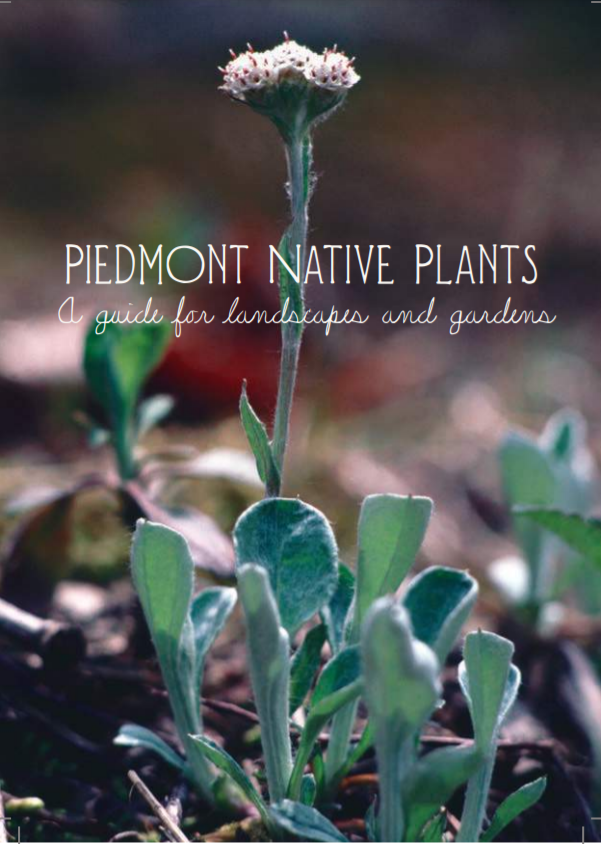 Piedmont Native Plants: A Guide for Landscapers and Gardens