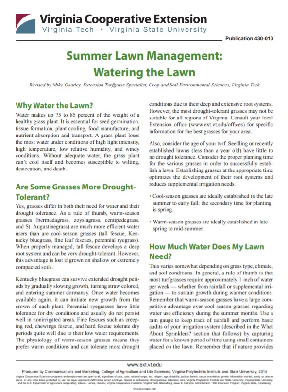 Summer Lawn Management: Watering the Lawn
