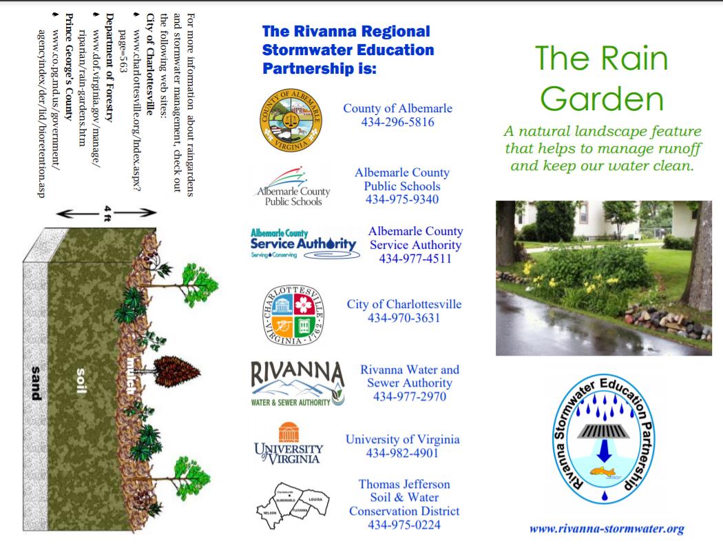 The Rain Garden